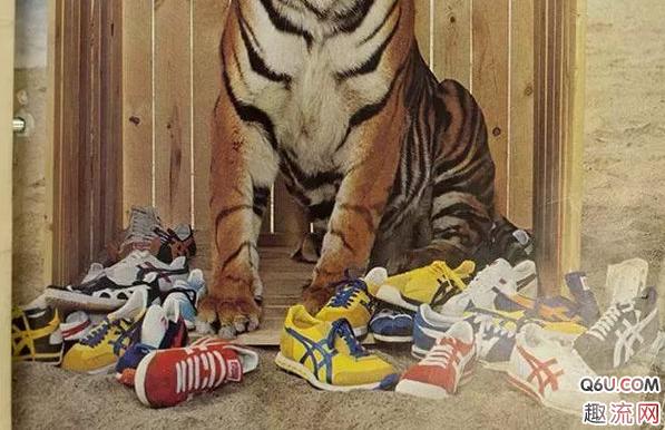 亚瑟士和鬼冢虎怎么区分 亚瑟士有什么经典鞋款