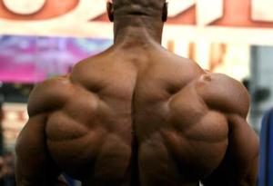 锻炼背部力量要怎么练 背部锻炼的动作要领