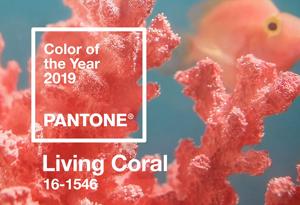 为什么珊瑚橙是2019年流行色 珊瑚橙应该如何搭配